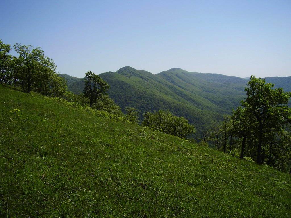 Вид с перевала на Хребет Хазарова