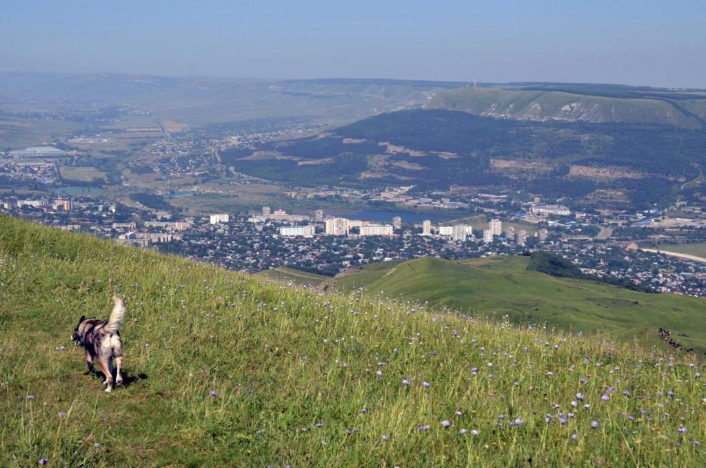 Вид с вершины горы Кабан. Кисловодск.