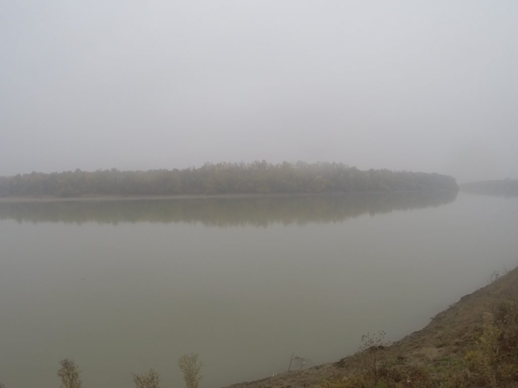 Пойменный лес возле Старобжегокая